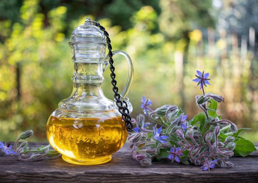 huile de bourrache incontournable pour la peau et le bronzage